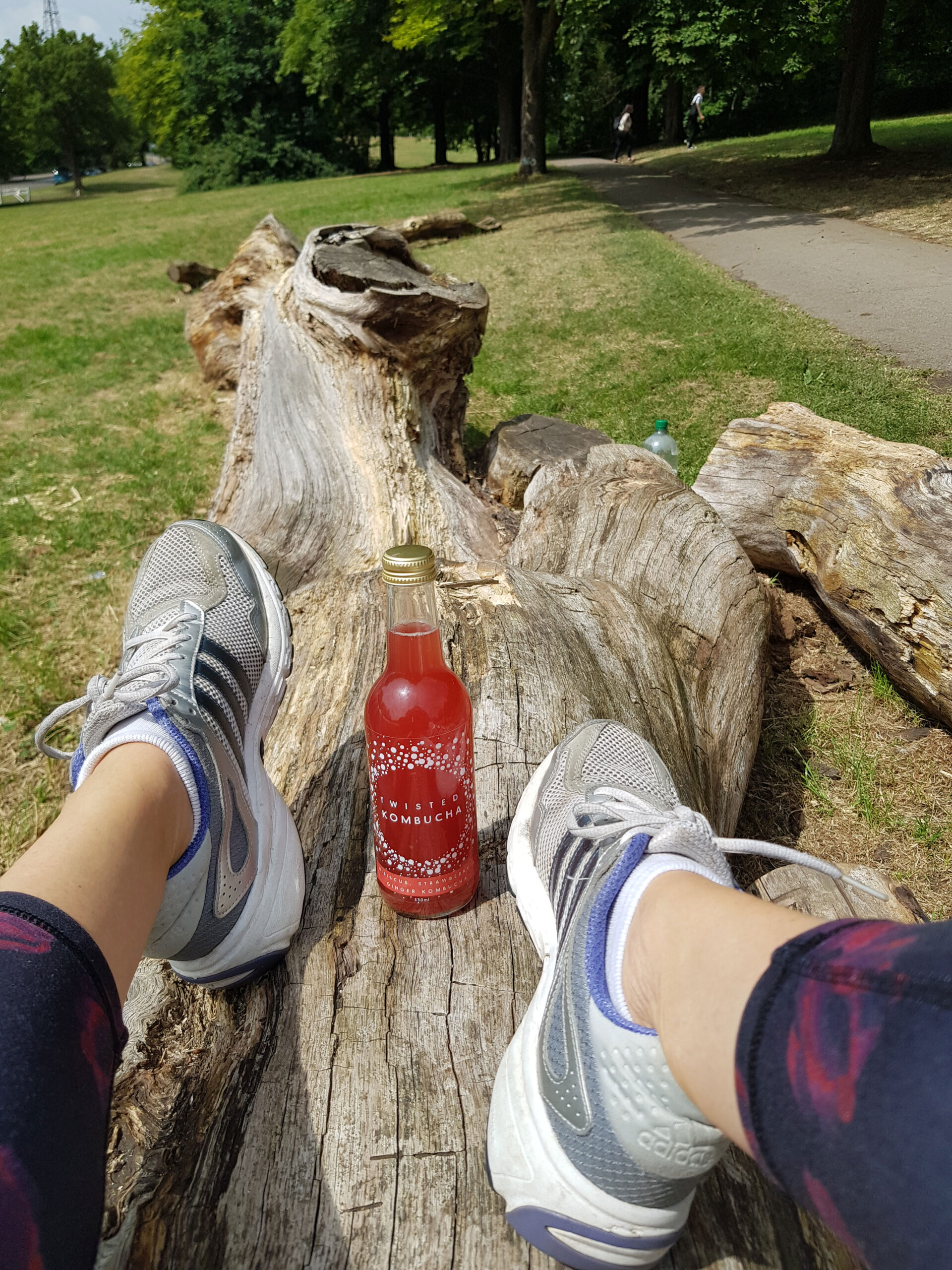 Twisted Kombucha on a log in the park